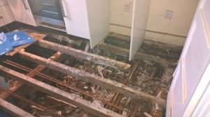Dry rot out break in Bournemouth Poole Weymouth Swanage Dorchester Wimborne Bridport Chrischurch Dorset
