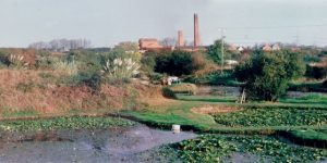 Now Bennett's water garden at Chickerell. Chickerell Brickworks and clay pits were first opened in 1859.