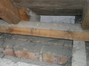 An active woodworm infestation in a roof in Bournemouth