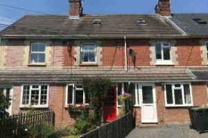Penetrating damp in Terrace houses affected by damp due to raised ground levels