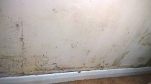 Condensation problems causing black mould growth on a wet wall in a bedroom