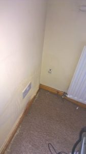Penetrating damp specialist find damp to lower walls around skirting board height