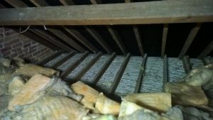 Common furniture beetle treatment for roof joists In Bournemouth Weymouth Poole Swanage Wimborne Blandford Dorchester New Forest Ringwood Bridport Christchurch Dorset Witshire Hampshire Somerset