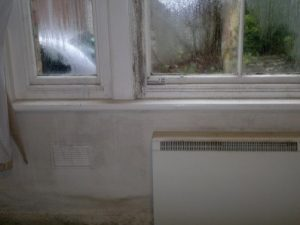 Damp information about damp deterioration in buildings